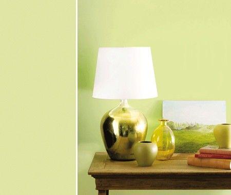 Benjamin Moore's Wales Green (2028-50)   @House & Home