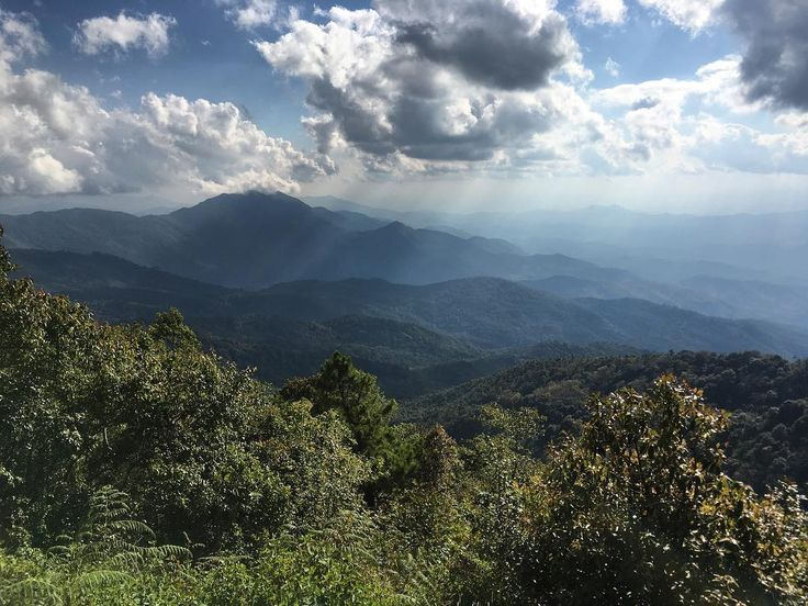 Took the day off and took a tour up to Doi inthanon national park with @vegangoddessjuliana. #chiangmai #thailand #doiinthanon #hiking #nature #ecommerceparadise