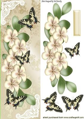Pretty cream flowers and butterflies Tall DL on Craftsuprint - Add To Basket!