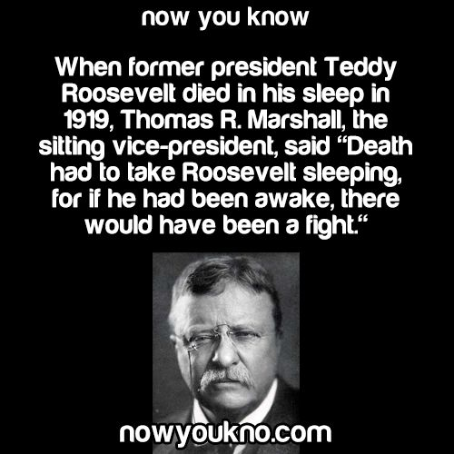 Source for more facts follow NowYouKno