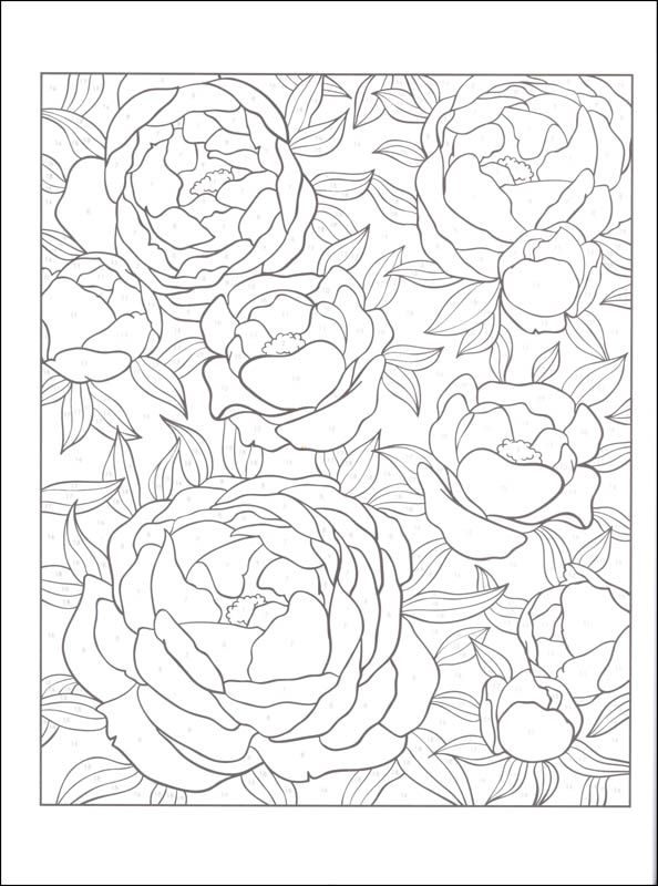 floral design color by number coloring pages for adults