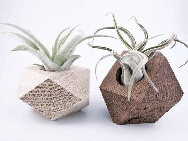 Wood planter airplant holder solid oak