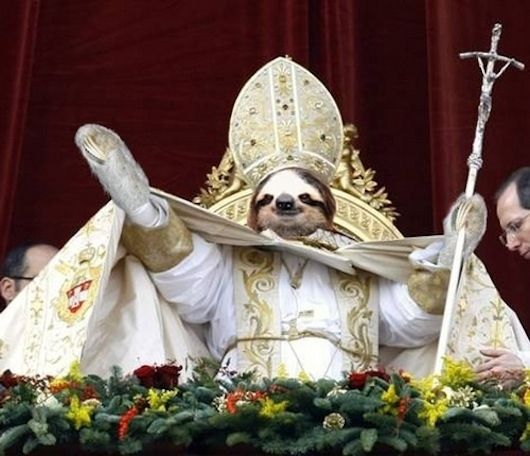 Sloth pope | The 25 Greatest Sloths The Internet Has Ever Seen