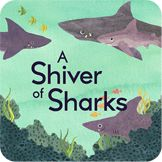 A Shiver of Sharks   Teaches Collective Nouns   Free Reading Strategies at appswithcurriculum.com/curriculum!