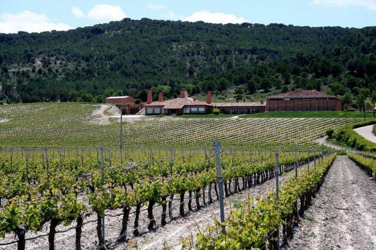 En la cuna de la Ribera del Duero, en la localidad de Peñafiel, podrás relajarte en un hotel con spa. Además incluye una visita guiada a la bodega Viña Mayor con cata de dos de sus vinos. Todo esto