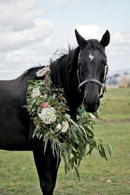 Show StopperHorses Flower, Beautiful Hors, Horses Garlands, Black Horses, Hors Bouquets, Floral Wreaths, Jane Frosh, Hors Garlands, Animal