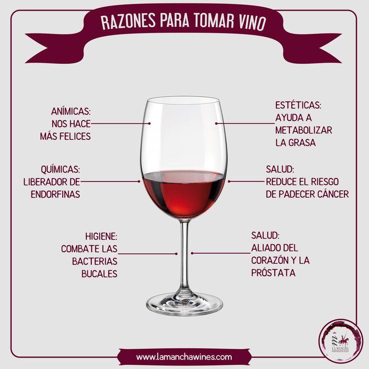 Razones para tomar una o dos copas de vino diarias. #vino #salud #infografía #beneficios #wine