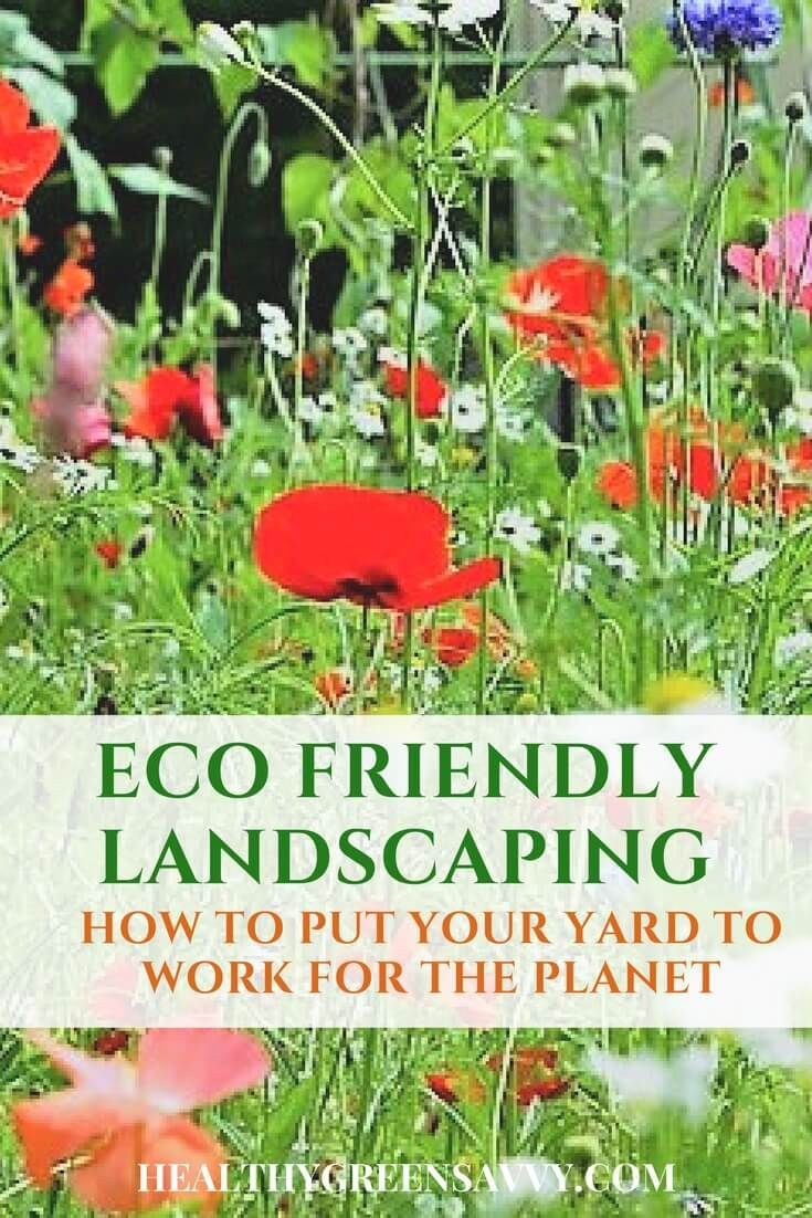 Eco friendly landscaping benefits you AND the planet! Save money, improve air quality, and capture carbon in your yard with these strategies. Put your yard to work for the planet! | eco friendly landscaping | gardening tips | climate change | environmentalism |