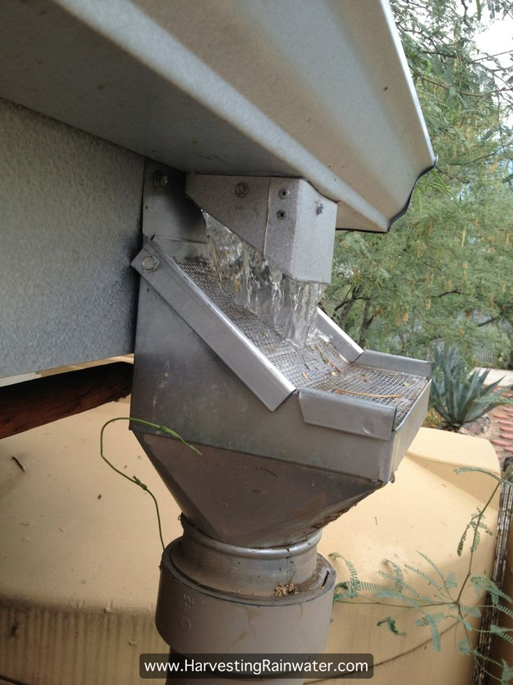 Rainhead Screen - filter debris from roof gutters