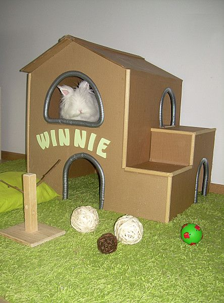 Diy a cardboard rabbit house bunny toys and treats for Homemade bunny houses