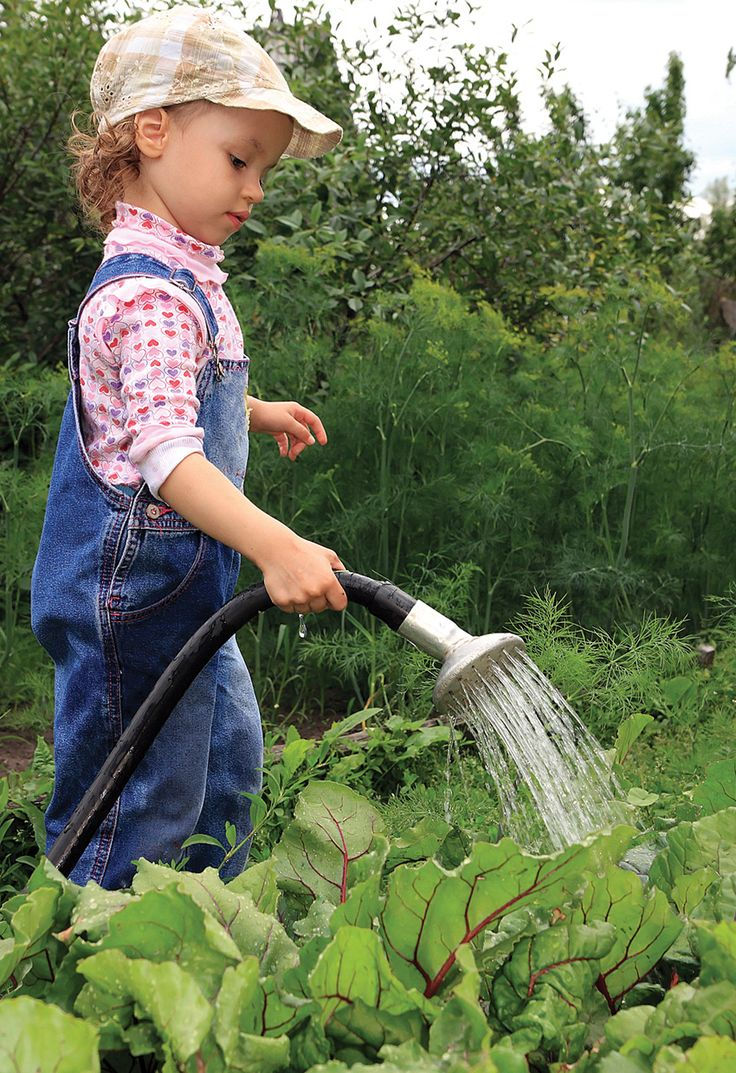 this year its been a slow start to the summer and gardeners are anxiously awaiting