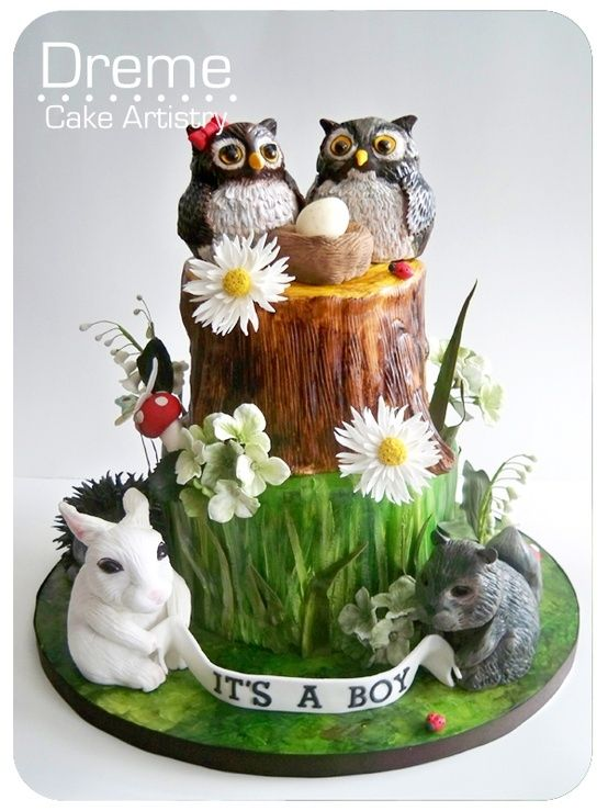 1000 Images About Baby Animal Cakes On Pinterest Owl
