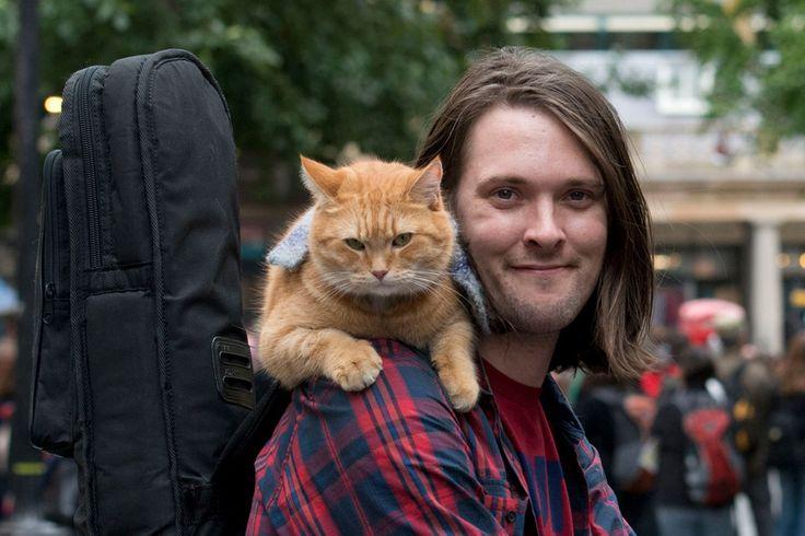 A Street Cat Named Bob, uma história real de amizade e salvação http://palavrasdoabismo.blogspot.com/2017/04/a-street-cat-named-bob.html #filmes #gatos #cinema #JamesBowen