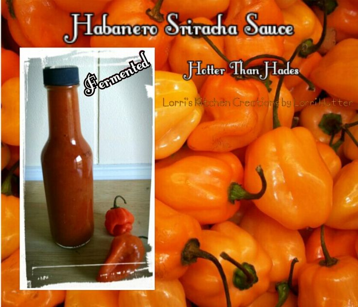 recipe: how many habaneros in a pound [14]