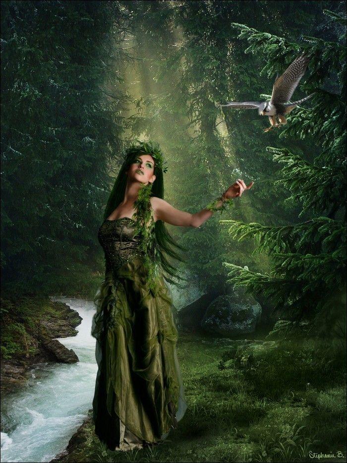 Картинки и фото фей ведьм