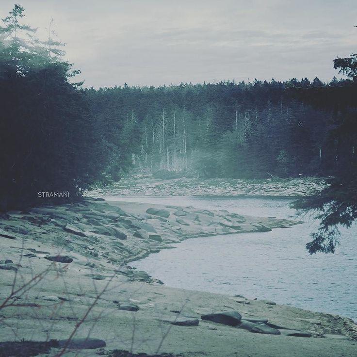 Der See - Im Sommer ist der kleine See voller Touristen. Wenn die Wintermonate anbrechen wirkt der kleine Ort im Harz wie ausgestorben. Das hat seinen Grund denn die Leute erzählen sich viele Geschichten über diesen idyllischen Ort. Die kleine Maggy glaubt diese Geschichten allerdings nicht. Eines Abends kurz vor einbruch der Nacht wollte sie wissen ob diese ganzen Geschichten stimmen. Sie klettert außen am Regenrohr aus ihrem Zimmer und rennt los um den Sonnenuntergang nicht zu verpassen…