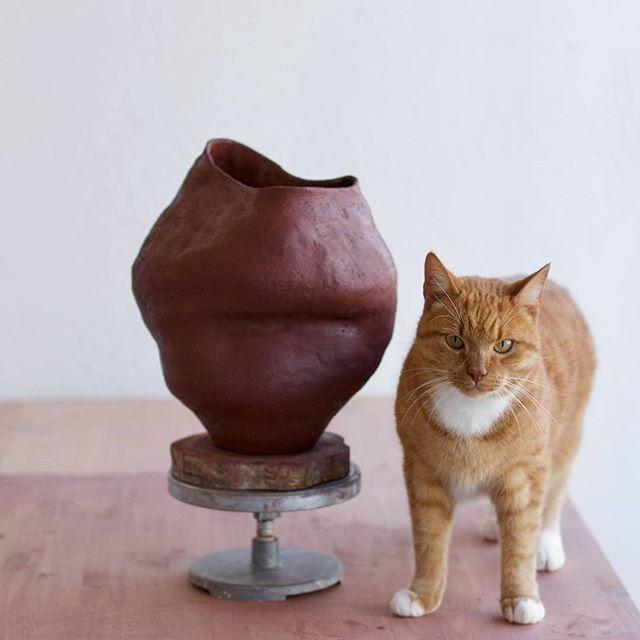 He never leaves the studio 😂 #simple #ceramics #vscocam #pottery #nordic #kiraniceramics #handmade #handcrafted #craft #vsco #notperfect #folk #liveauthentic #aesthetics #shape #design #wabisabi #potter #livefolk #scandinavian #studio #makersgonnamake #artisan #slowliving #buyfolk #livethelittlethings #rustic #vase #shelfie #black