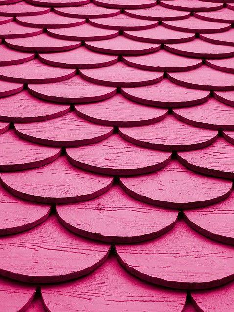 pink shingles