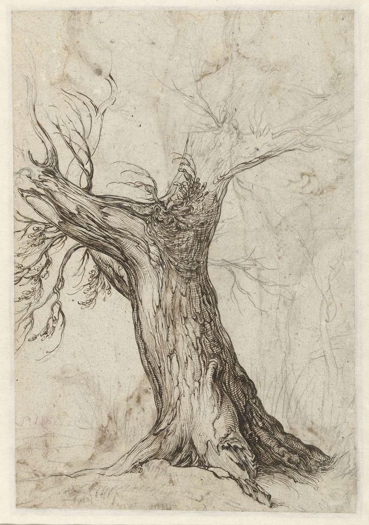 Studie van een boomstronk, Jacob de Gheyn (II), 1598 - 1608