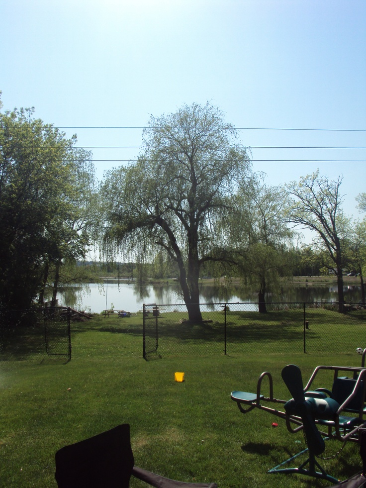 It's a beautiful day here in #Omemee ♥
