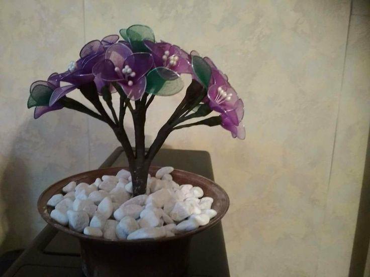 Lila bonsai
