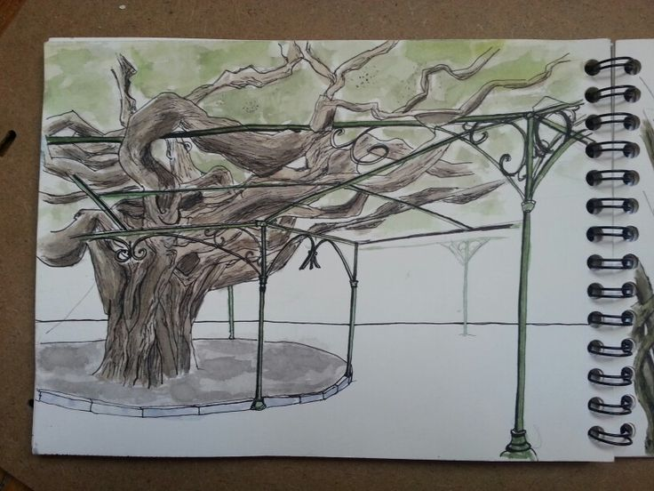 Technique libre pour cet arbre parasol charnu - lisbonne j5 (j aime bien les imperfections) ♥♥♥ sauf la ligne du fond qui m a été demandée d ajouter. L arbre rtait bien ancré grace aux armatures. Ils etait censé ouvrir qur oa suite, comme une fenêtre sur une flore exubérante
