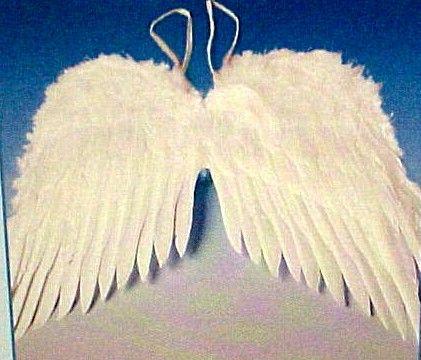 wingsAngel Wings, Crafts Ideas, Birds Wings, Birthday Girls, Halloween Costumes, Christine Masquerades, Costumes Birds, Masquerades Angels, Angels Wings