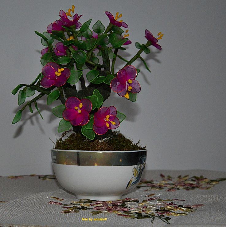 Virágzó bonzaj