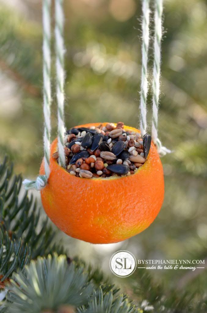 How to Make an Orange Bird Feeder