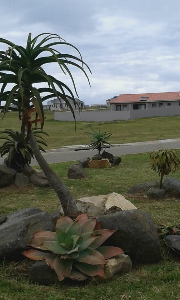 The Village THE VILLAGE at KIDDS BEACH represents the first phase of the Kidd's Beach Green Estate. All indigenous plants! ....