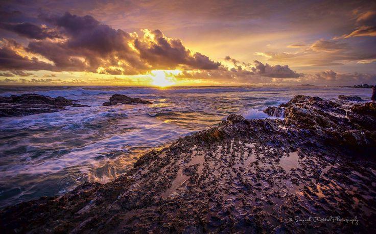 Currumbin Rocks  QLD Australia