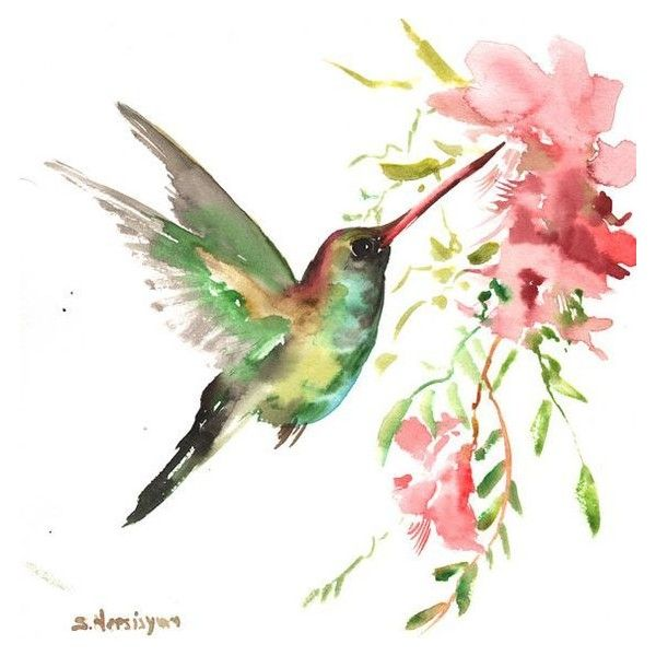 Hummingbird, original watercolor painting, 12 X 12 in. pink red green... ❤ liked on Polyvore featuring home, home decor, wall art, birds, bird wall art, watercolor wall art, pink home decor, hummingbird wall art and water color painting