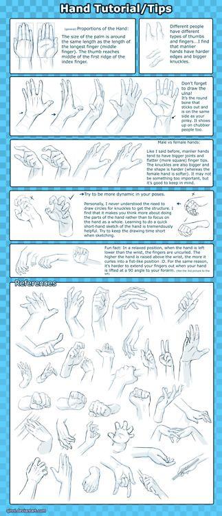 Drawing Art Tutorial Hands Anatomy repinned by www.BlickeDeeler.de