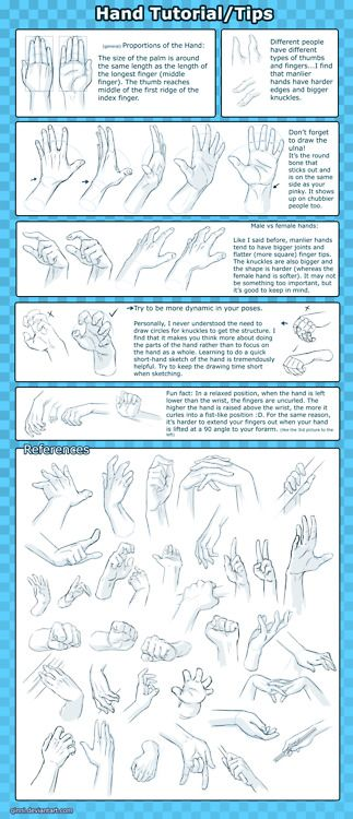 Drawing Art Tutorial Hands Anatomy repinned by www.BlickeDeeler.de