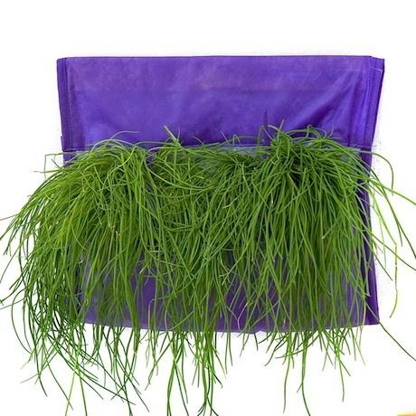 """Sacca da casa per piccoli orti e profumi.Contiene una SAKKA SINGOLA, un sacchetto di terriccio TNT, un sacchetto contenente feltro da mettere in fondo ai """"vasi"""" in modo da mantenere l'umidità e prevenire i ristagni d'acqua, e le istruzioni d'uso  Dimensioni: Altezza 30 cm Larghezza 40 cm. http://lovli.it/index.php/sakka-singola.html#"""