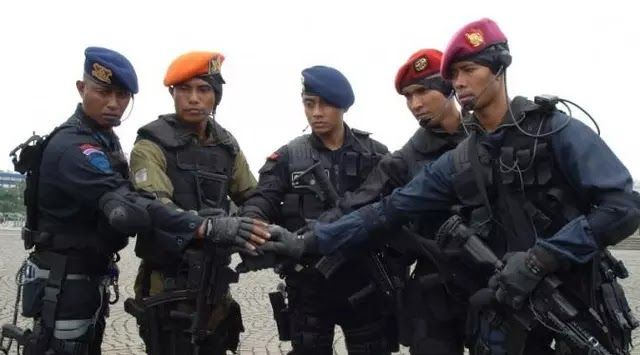 National Army Forces Indonesia