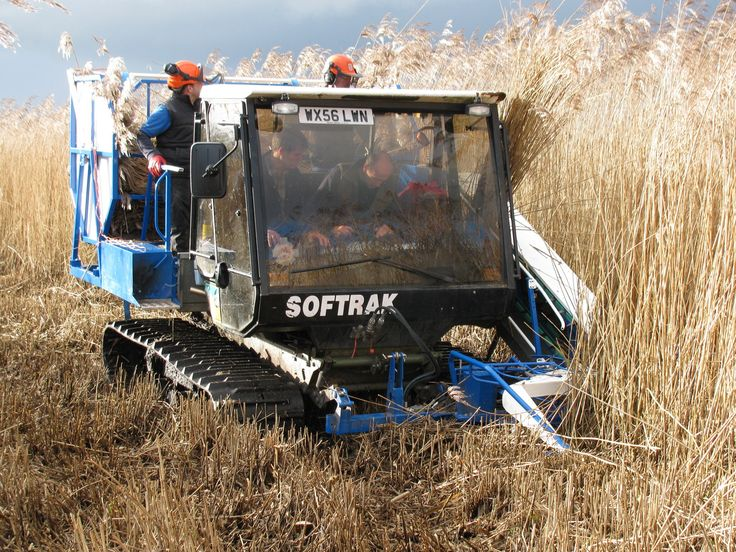 Loglogic Softrak #Reed-harvester, #thatching reed