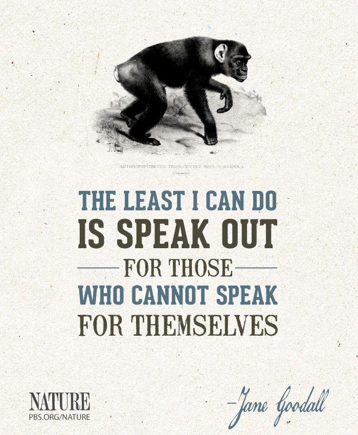 Jane Goodall - Animal right's activist.                                                                                                                                                                                 More