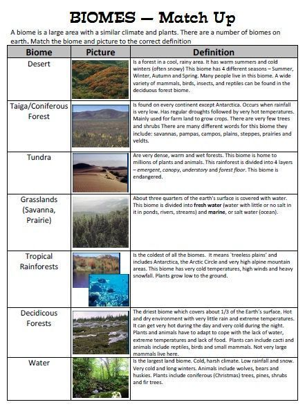 Tundra Natural Resources Biomes