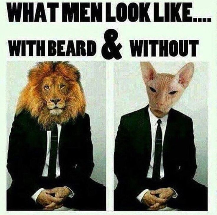 What Men Look Like With Beard & Without. Do You Agree? from Beardoholic.com