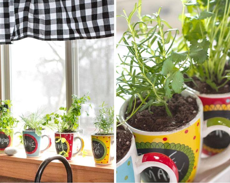 Best 25+ Growing herbs indoors ideas on Pinterest | Indoor herbs ...