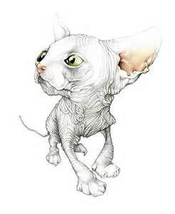 sphynx-drawing-from-web.jpg