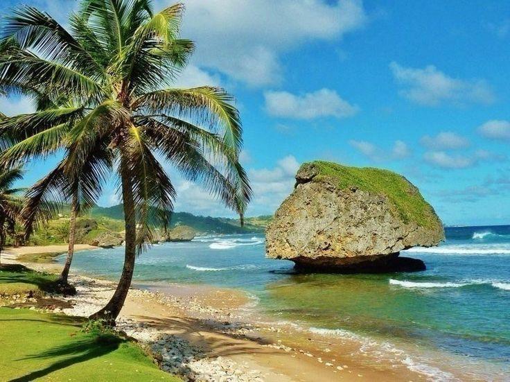 Утреннее побережье, Барбадос