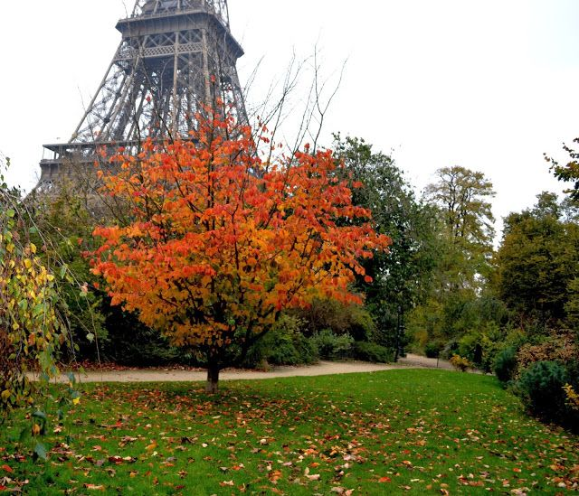 fall in paris france - photo #2