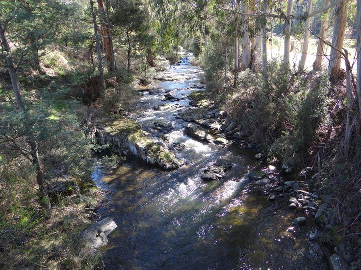 Crabtree Rivulet - Southern Tasmania - 2014