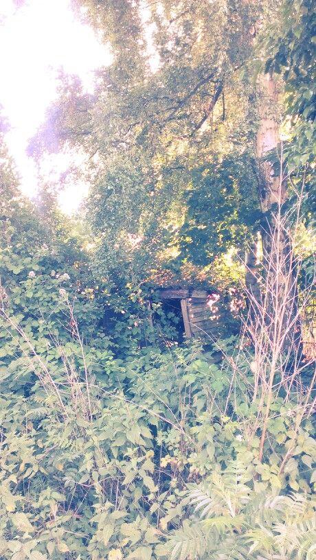Hidden place @ my backyard