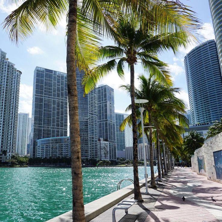 Miami city view #ThursdayThoughts #downtown #miami #citylife #miamilife #florida