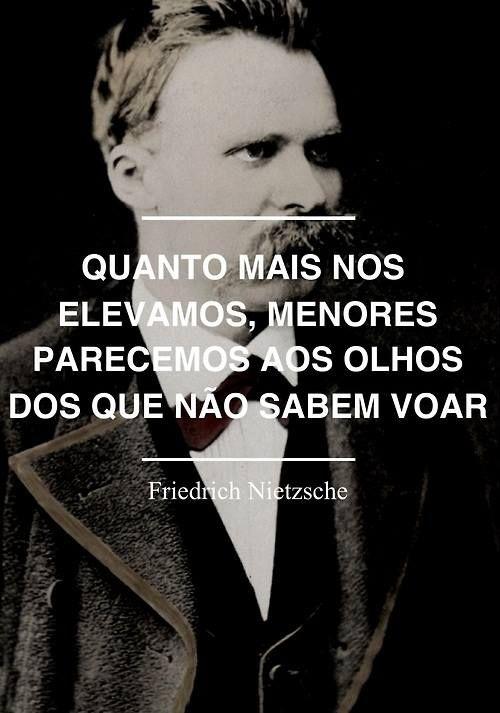 Quanto mais nos elevamos, menores parecemos aos olhos dos que não sabem voar. Friedrich Nitzsche