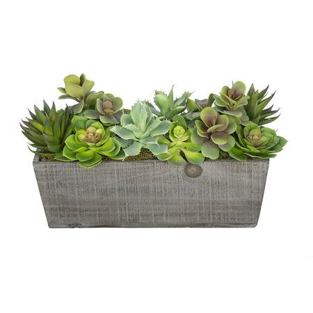 You will never have to worry about caring for your succulents again with this artificial succulent garden handcrafted by House of Silk Flowers. This arran...