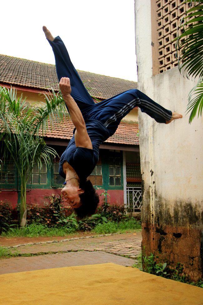 Tiger defying gravity <3